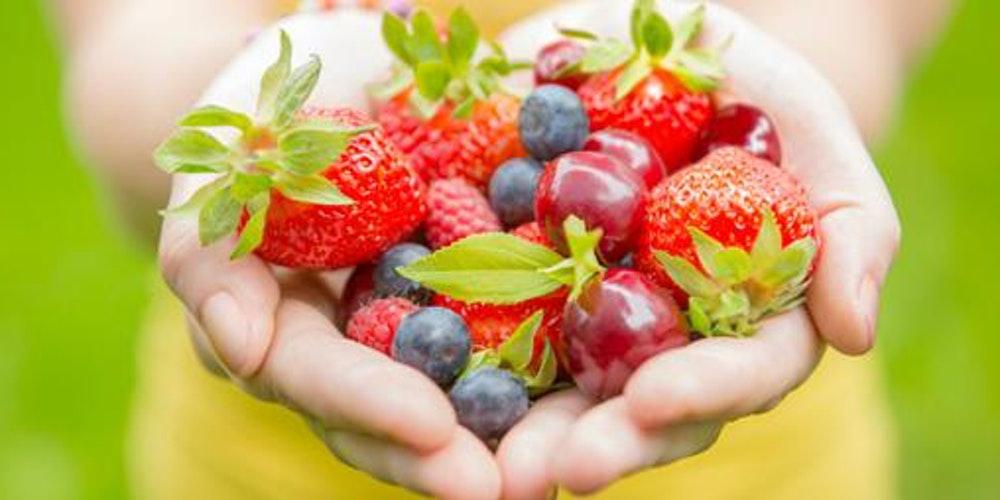 Nutrición Dinámica - Misión