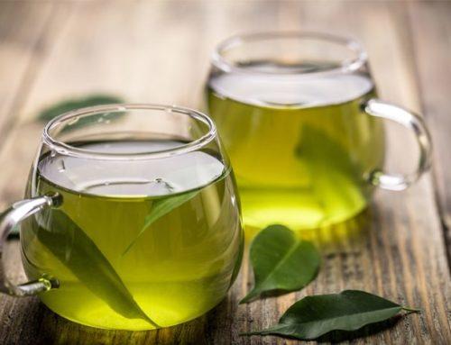 ¿Té verde para bajar de peso?